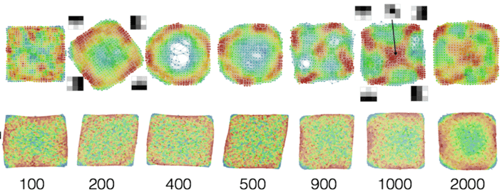 Using Topological Data Analysis to Understand the Behavior of Convolutional Neural Networks